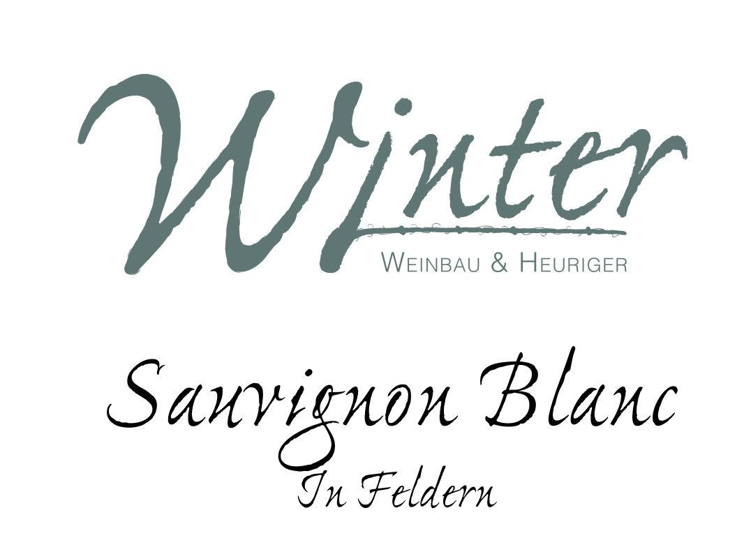 Sauvignon Blanc In Feldern 2020